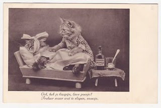 18 amazing vintage cat's pictures | Kitty Bloger