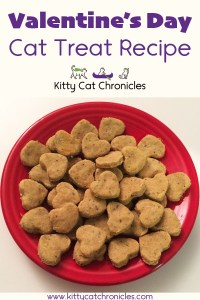 Homemade Valentine's Day Cat Treat Recipe