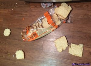 Bread Crust Eater