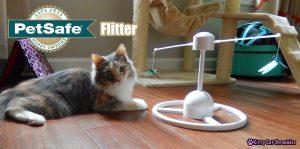 PetSafe Flitter