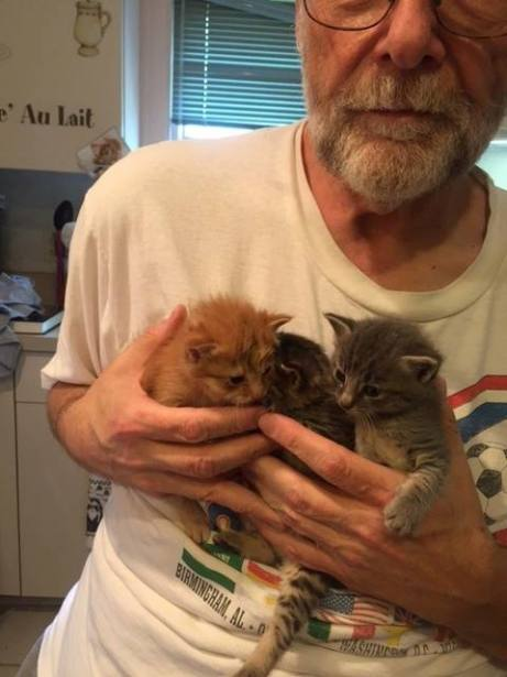 Vlad, Jor, & Alex  - Hug Your Cat Day