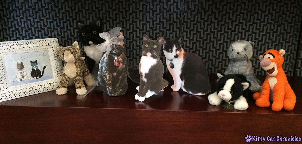 The Wedding Party - Sampson and Astrid's Wedding - BlogPaws