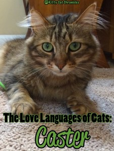 The Love Languages of Cats: Caster