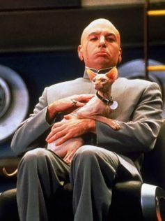 Top 5 Favorite Feline Actors: Ted Nude-Gent as Mr. Bigglesworth in Austin Powers