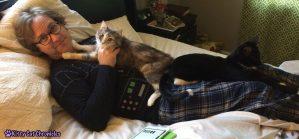 Covered in Kitties