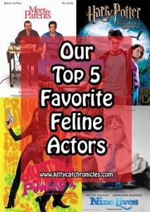 Our Top 5 Favorite Feline Actors