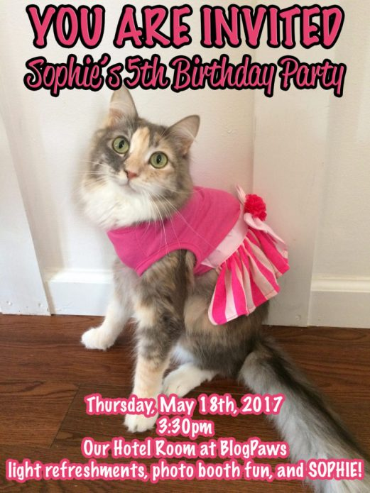 You are Invited to Sophie's 5th Birthday Party!