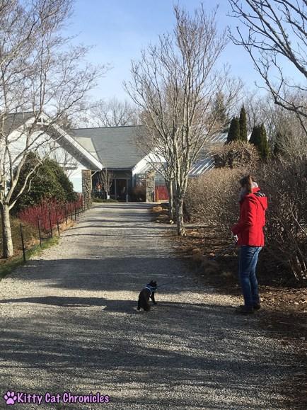 The KCC Adventure Team in Asheville: The North Carolina Arboretum - Kylo Ren walking