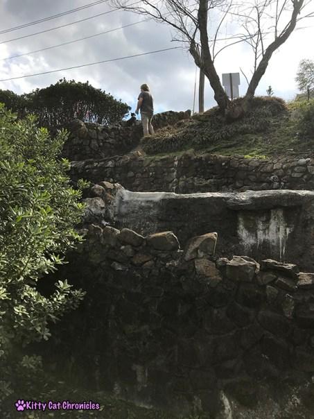 Kylo Ren Goes on His First Urban Adventure - Washington Park