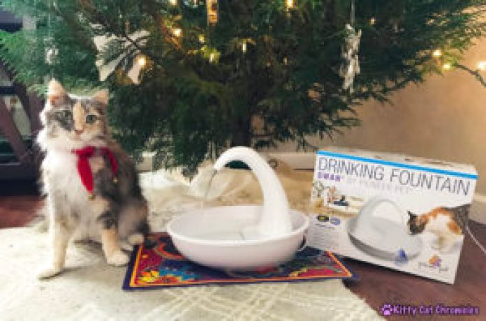 The 2018 KCC Holiday Gift Guide for Adventure Cats - Pioneer Pet Swan Drinking Fountain