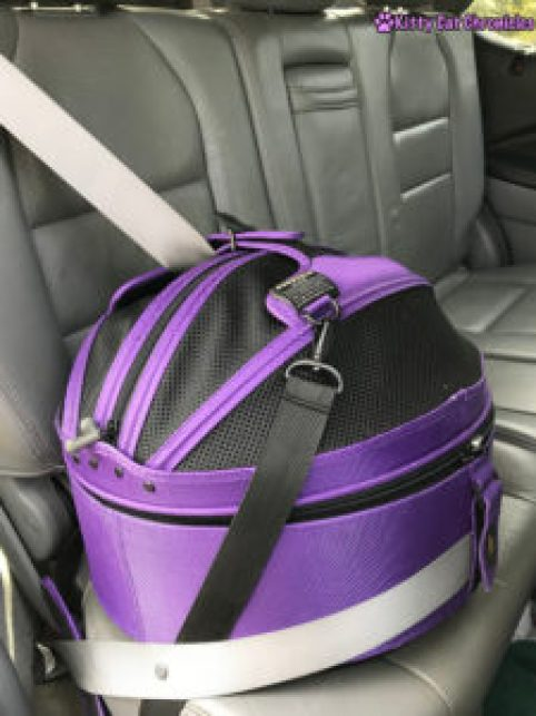 Why We Love the Sleepypod Mobile Pet Bed + a Giveaway! - Sleepypod in a car