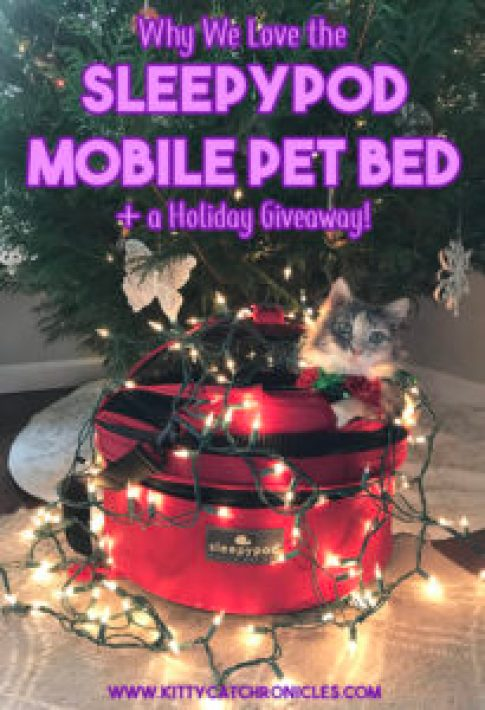 Why We Love the Sleepypod Mobile Pet Bed + a Holiday Giveaway!