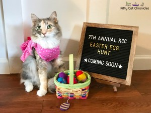 The 7th Annual KCC Easter Egg Hunt: Coming Soon