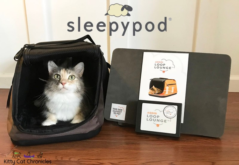 Sleepypod Air Assisi Loop Lounge with cat inside