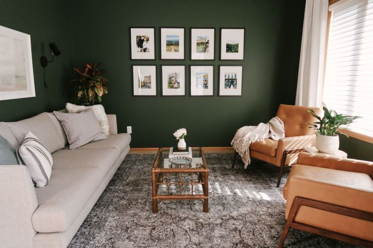 Tips For Decorating A Living Room With Dark Bold Paint Color Kitty Cotten