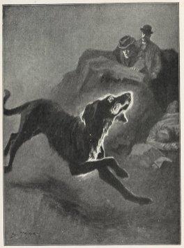 Baskervilles hund