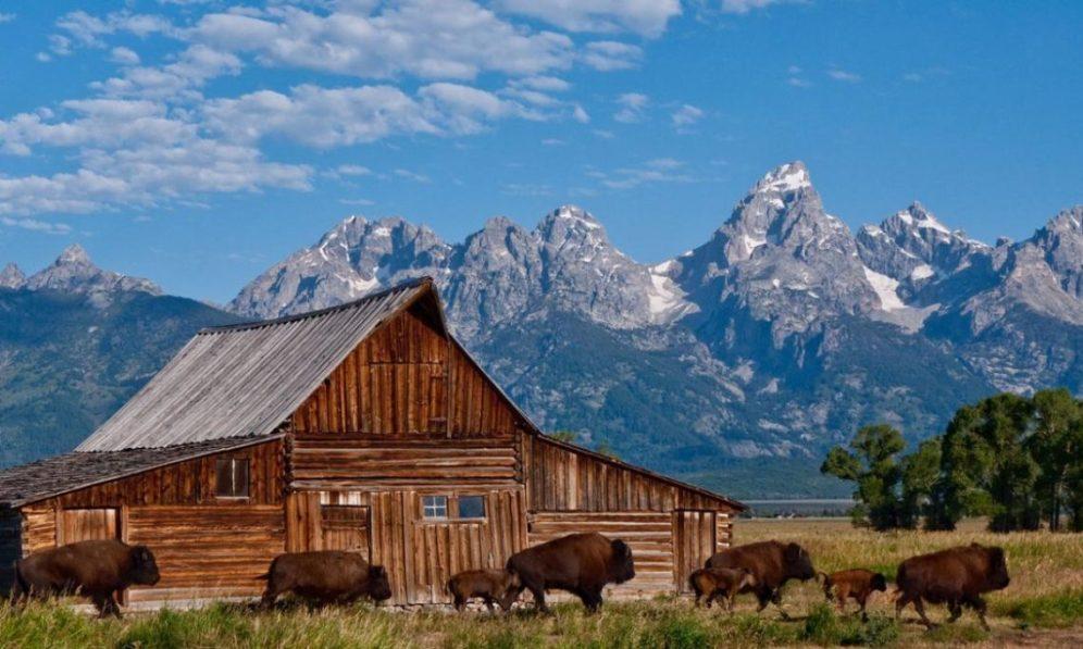 Wyoming 4
