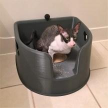 Kitty LitterBowl on Floor