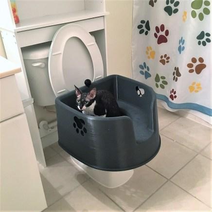 Kitty LitterBowl on Toilet