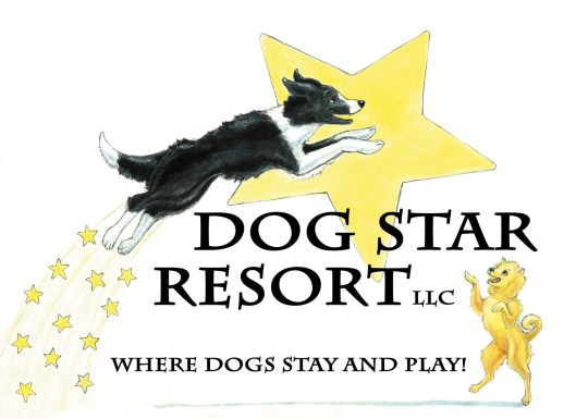 Dog Star Resort