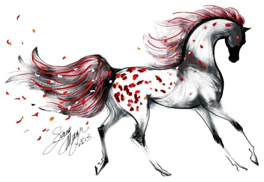 Appaloosa and Rose Petals