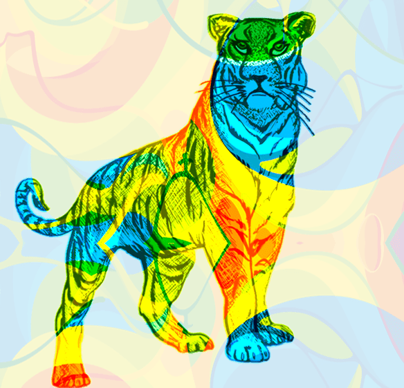 Olympic Tiger | 2016