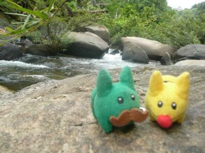 Marshall and Calvin enjoying the river