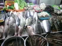 Catch of the day, take your pick