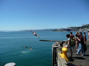 Diving off the pier!