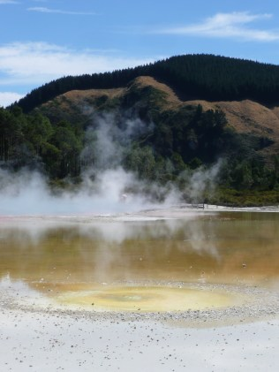 Steaming thermal pool at Wai-o-tapu