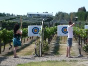 Wine + archery = good combo?