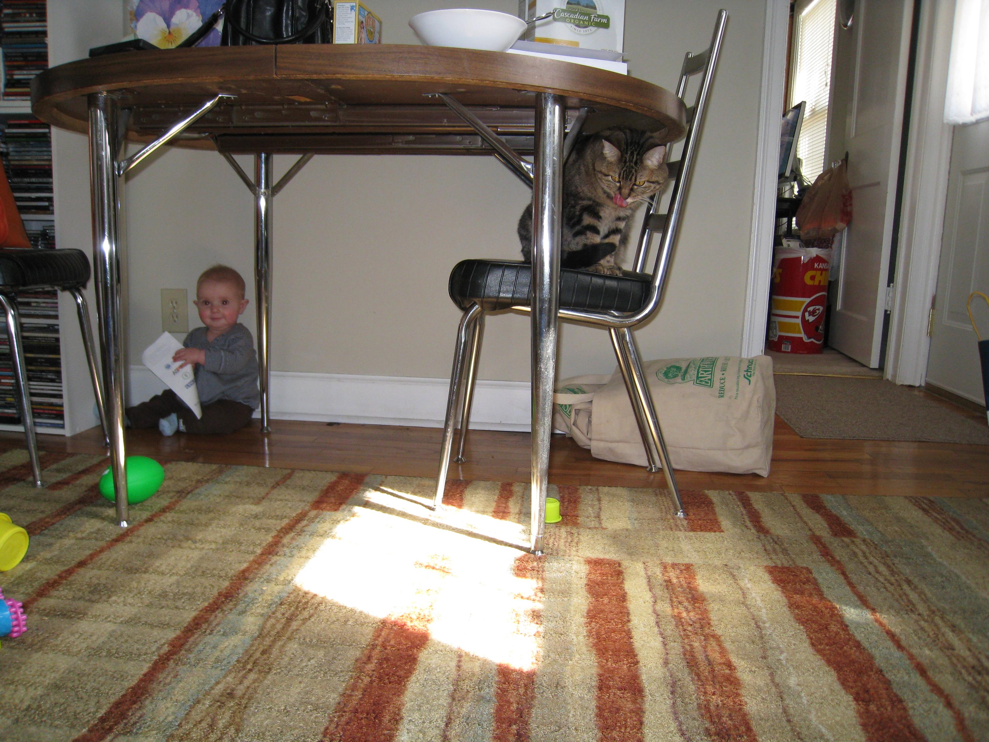 babyproofing-needed