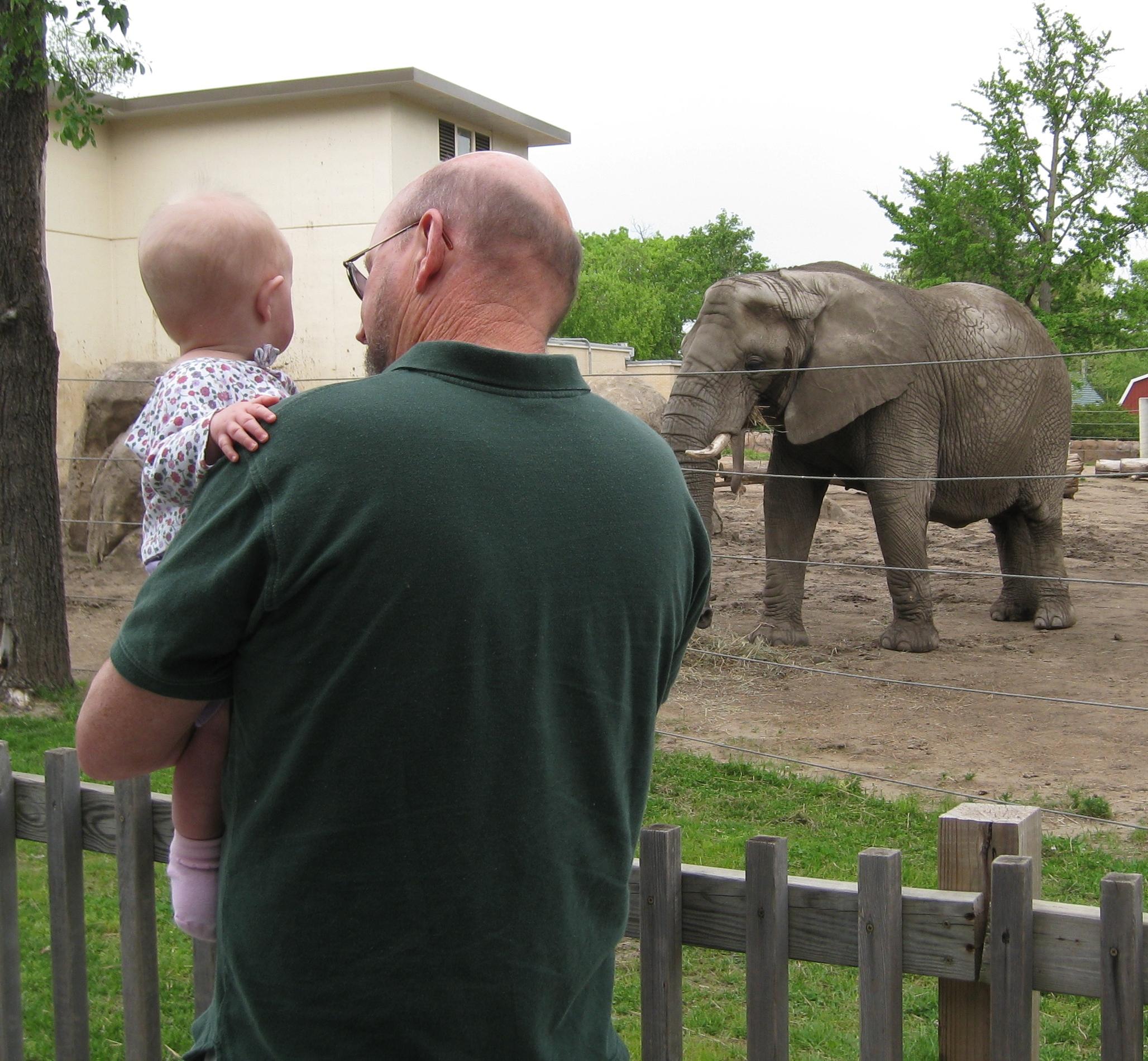 grandpa and kivrin and elephant