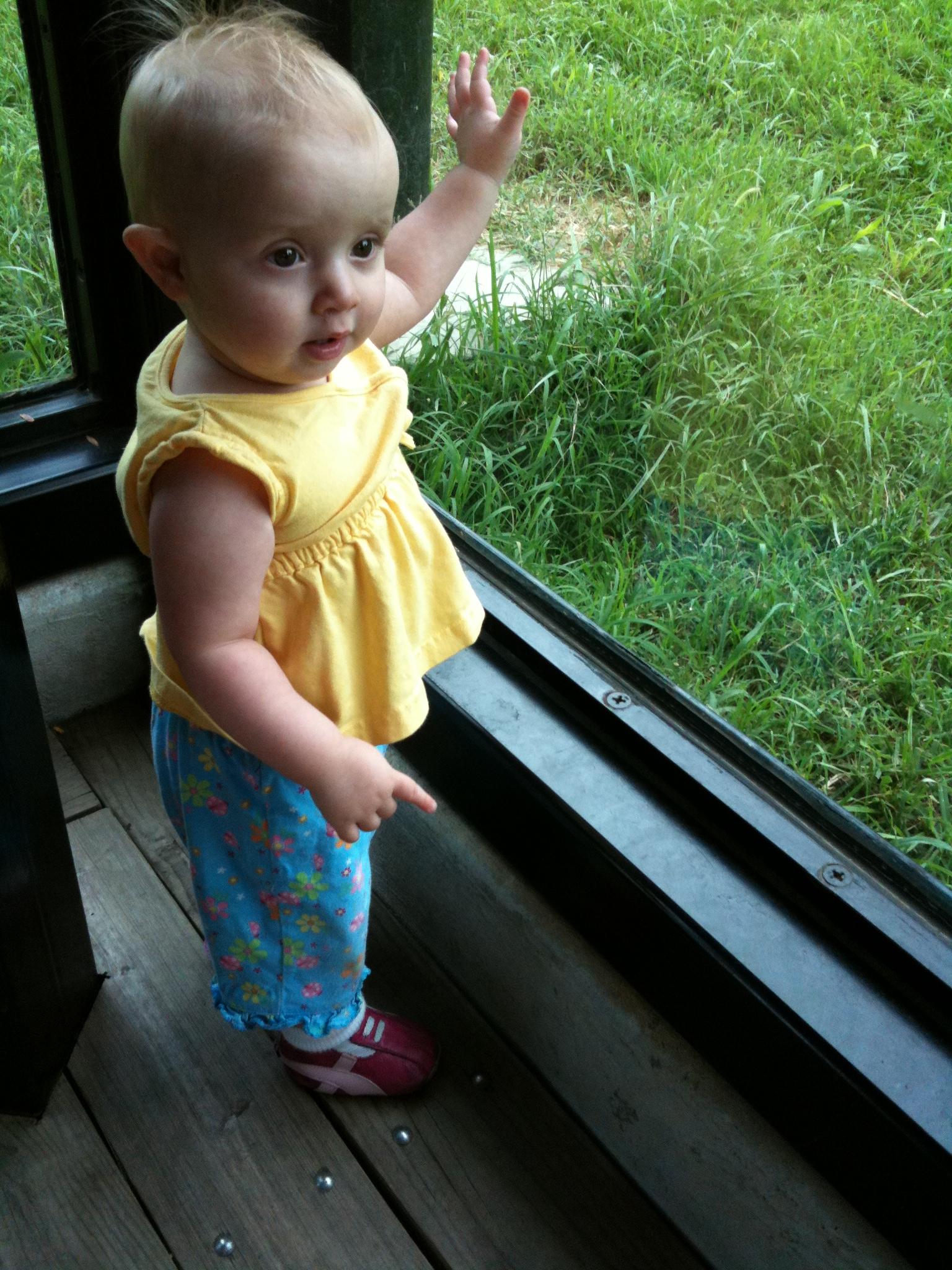kivrin at the zoo