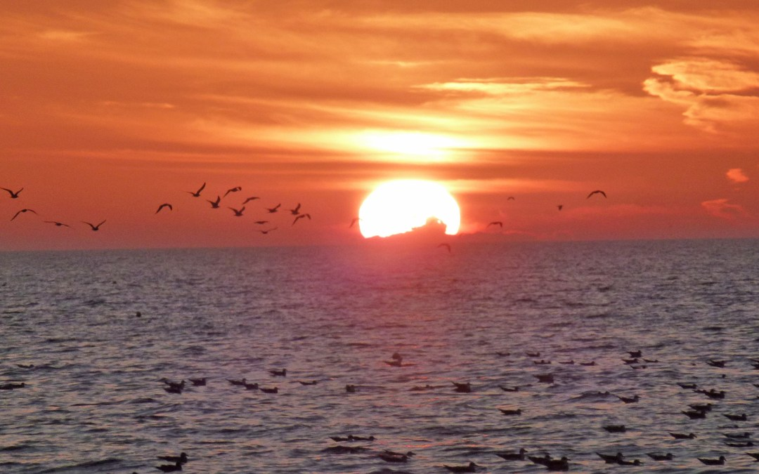 Mon plus beau coucher de soleil… ( Floride )