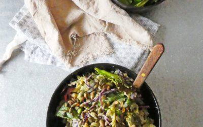 Salade de pâtes aux pois cassés, sauce crémeuse et légère au sésame  ( Sans blé, vegan )