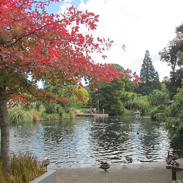 Botanic garden Dunedin