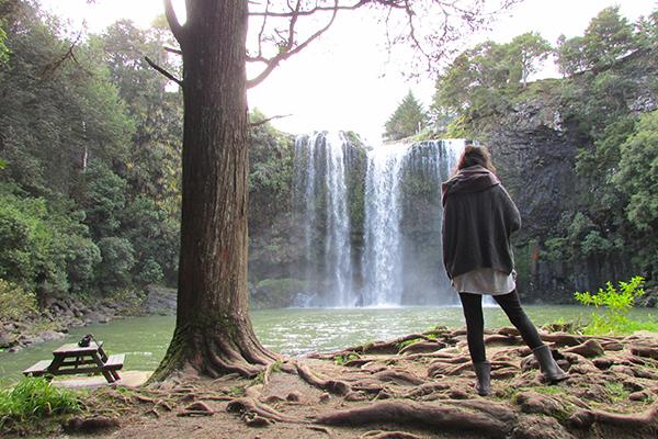 Whangarei Falls