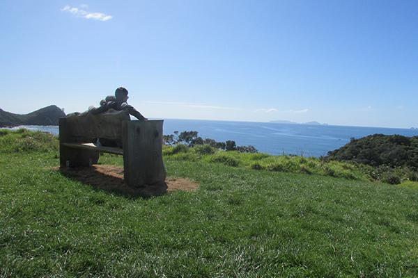 vistas northland
