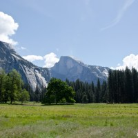 Getting back to nature at Yosemite National Park