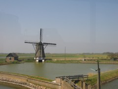 One of the many windmills