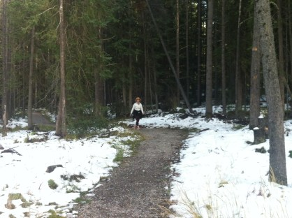 Our walk around Tunnel Mountain