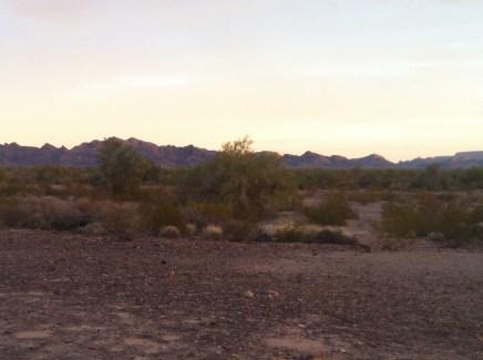 Arizona Jan 2015 137