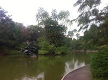 Lake in garden