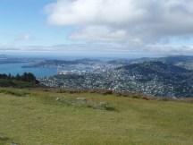 View from Mt Kau Kau