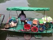 Bit of fish shopping