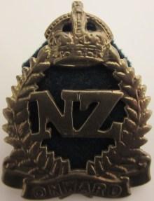 nz-onwards-div-cav