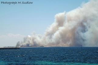 bush fires2