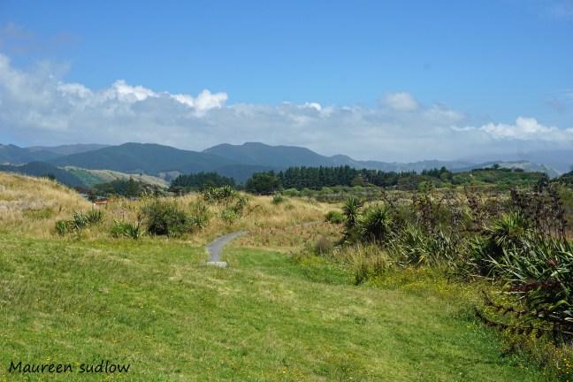 waikanae-estuary2
