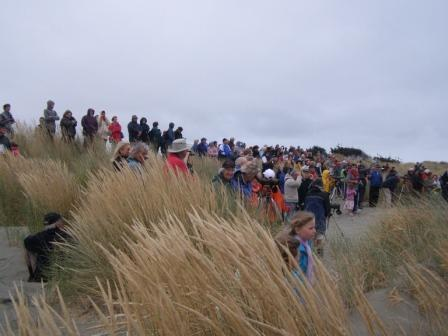 the sand dunes are alive with bird watchers